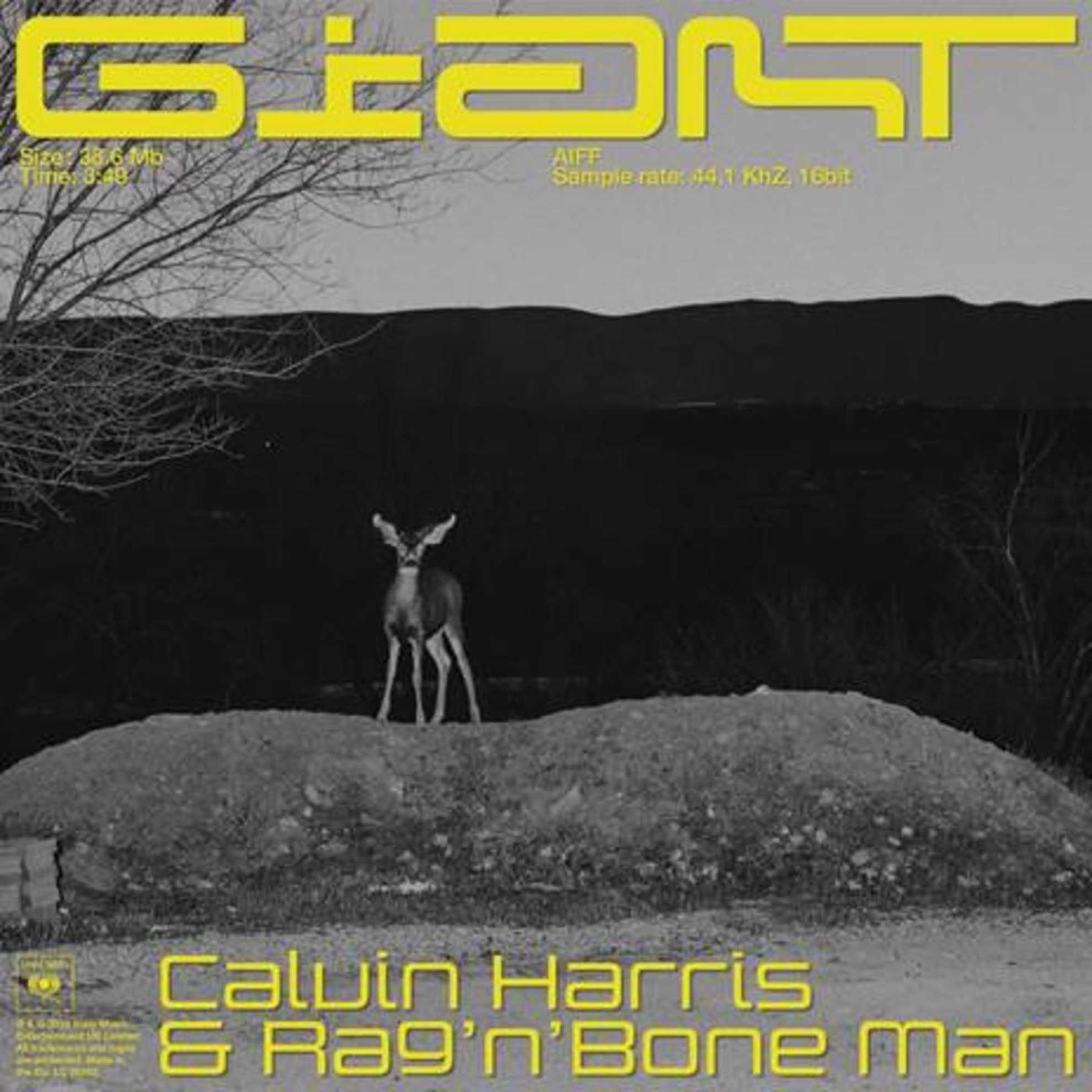 Giant - Calvin Harris & Rag 'n' Bone Man